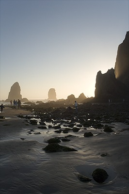 Cannon Beach Low Tide