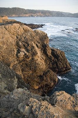 Mendocino Coast IV