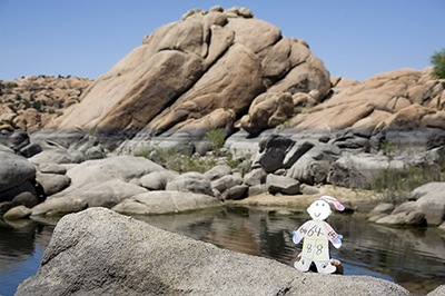 Flat Stanley Climbs Around Granite Dells in Prescott, AZ