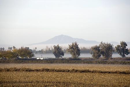 Mount Diablo Rising