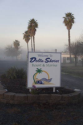 Welcome to Delta Shores