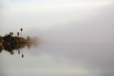 Delta Fog II