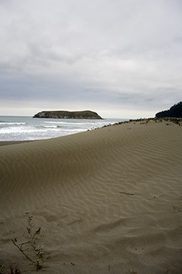 Undulating Sand and Surf